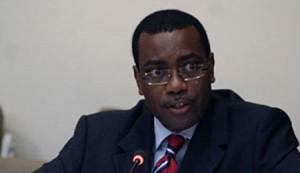 200412N.Akinwumi-Adesina